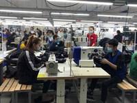 Thanh Hóa: Doanh nghiệp FDI có nhu cầu tuyển hàng chục nghìn lao động