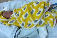 Can thiệp cứu thành công bệnh nhi 44 ngày tuổi tim bẩm sinh hiếm gặp