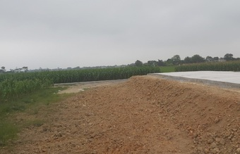 Vụ đấu giá đất rúng động vùng quê: Hủy kết quả do vi phạm nội quy đấu giá