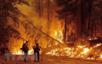Mỹ: Bang California thông qua ngân sách ứng phó biến đổi khí hậu