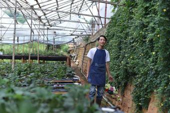 Bỏ việc công sở, chàng trai 8X xây nhà gỗ, trồng hồng, làm farmstay đẹp như mơ ở Đà Lạt