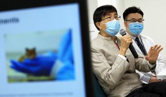 """Chuột nhiễm COVID-19 """"hấp hối"""" vì một hiện tượng lạ: Giáo sư Hồng Kông kêu gọi làm 1 việc khẩn cấp ngay trước mùa đông"""