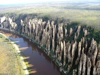 """Khu rừng kỳ lạ """"mọc"""" hàng nghìn trụ đá cách đây 500 triệu năm"""