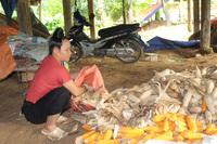 Việt Nam thực hiện đồng bộ giải pháp để bảo đảm quyền cho đồng bào dân tộc thiểu số