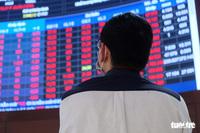 Chứng khoán lao dốc, cổ phiếu ''nhóm Louis'' tiếp tục giảm sàn