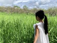 """""""Mắc kẹt"""" ở Mộc Châu do Hà Nội giãn cách, gia đình làm vườn đẹp mê"""