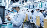 Dịch Covid-19: Doanh nghiệp FDI khẳng định không thay đổi chiến lược đầu tư