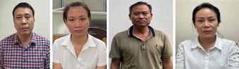 Cơ quan điều tra Bộ Công an khởi tố 4 bị can liên quan dự án trồng mới cây xanh tại Hà Nội