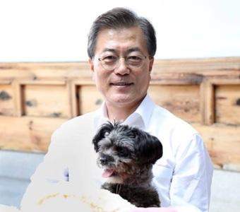 Tổng thống Hàn Quốc kêu gọi cân nhắc cấm ăn thịt chó