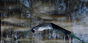 Phim ''Miền ký ức'' của Bùi Kim Quy được cấp phép, Busan chọn tranh tài