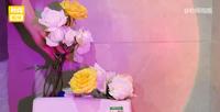 'Bạn trai nhà người ta' mỗi ngày đều mua hoa tặng người yêu, chất đầy trong tủ lạnh và cắm cả vào két nước bồn cầu