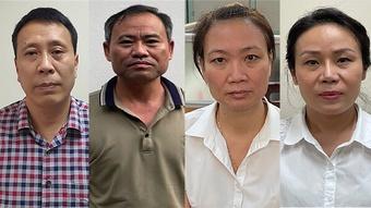 Bắt giam thêm 4 bị can ''ăn'' cây xanh ở Hà Nội