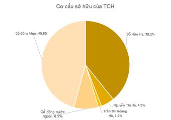 TCH: Tổng Giám đốc đăng ký mua vào 22 triệu cổ phiếu tăng tỷ lệ sở hữu và gắn bó với công ty