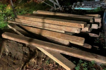 Phát hiện xe ô tô tải chở nhiều gỗ quý trái phép trong đêm