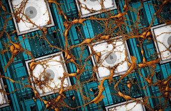 Samsung hé lộ nghiên cứu sao chép não người vào chip