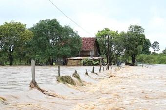 Đắk Lắk: Mưa lớn gây ngập lụt cục bộ tại huyện biên giới Ea Súp