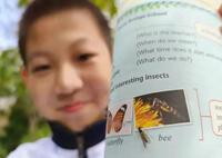 Học sinh lớp 7 tự tin chỉ ra lỗi sai trong sách giáo khoa, nhà xuất bản vội nhận lỗi ngay