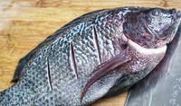 Khi đi chợ, đừng bao giờ chọn 4 loại cá này vì ''bẩn nhất chợ'', không tươi ngon lại có thể rước bệnh về cho cả gia đình