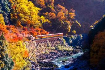 Hành trình Bắc - Nam và 5 chuyến tàu lửa thú vị nhất thế giới