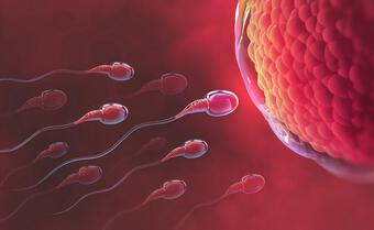 Bất thường tinh trùng khó thụ thai