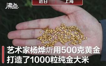 Bị chỉ trích dữ dội vì đúc gạo từ vàng rồi vứt khắp nơi kêu gọi tránh lãng phí lương thực, nghệ sĩ vẫn thanh minh: Vàng không quý bằng gạo!