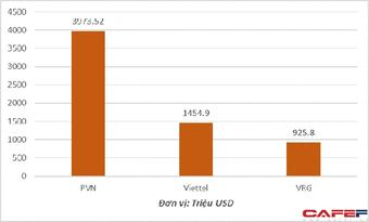 Vì sao doanh nghiệp Nhà nước đầu tư ra nước ngoài lỗ 1,17 tỷ USD?