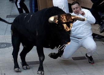 Số ca mắc Covid-19 giảm, người Tây Ban Nha tiếp tục mạo hiểm với... bò tót