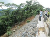 Trồng lại diện tích rừng bị mất do sụt lở đất ở Phong Nha - Kẻ Bàng