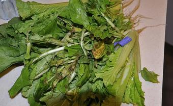 Người phụ nữ được chẩn đoán mắc ung thư gan giai đoạn cuối, bác sĩ nói nguyên nhân từ 1 thói quen khó bỏ khi ăn rau mà rất nhiều người phạm phải