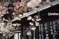 ''Vùng đất của những người bất tử'' ở Nhật: Sống lâu, giàu có và hạnh phúc nhờ đúng một chữ