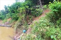 """Sông Thu Bồn sạt lở, hàng chục ngôi nhà chênh vênh bên miệng """"hà bá"""""""