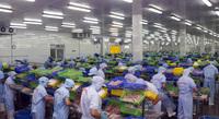 Nhiều ổ dịch tại nhà máy thủy sản, miền Tây ứng phó ra sao?