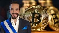 """Chính phủ El Salvador """"bắt đáy"""" thêm 420 Bitcoin"""