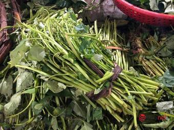 Rau xanh tăng giá cao hơn thịt, khi nào giá rau mới hạ nhiệt?