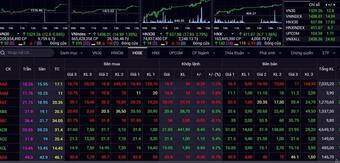 Cổ phiếu đua nhau tăng giá, VN-Index lại lập đỉnh cao mới